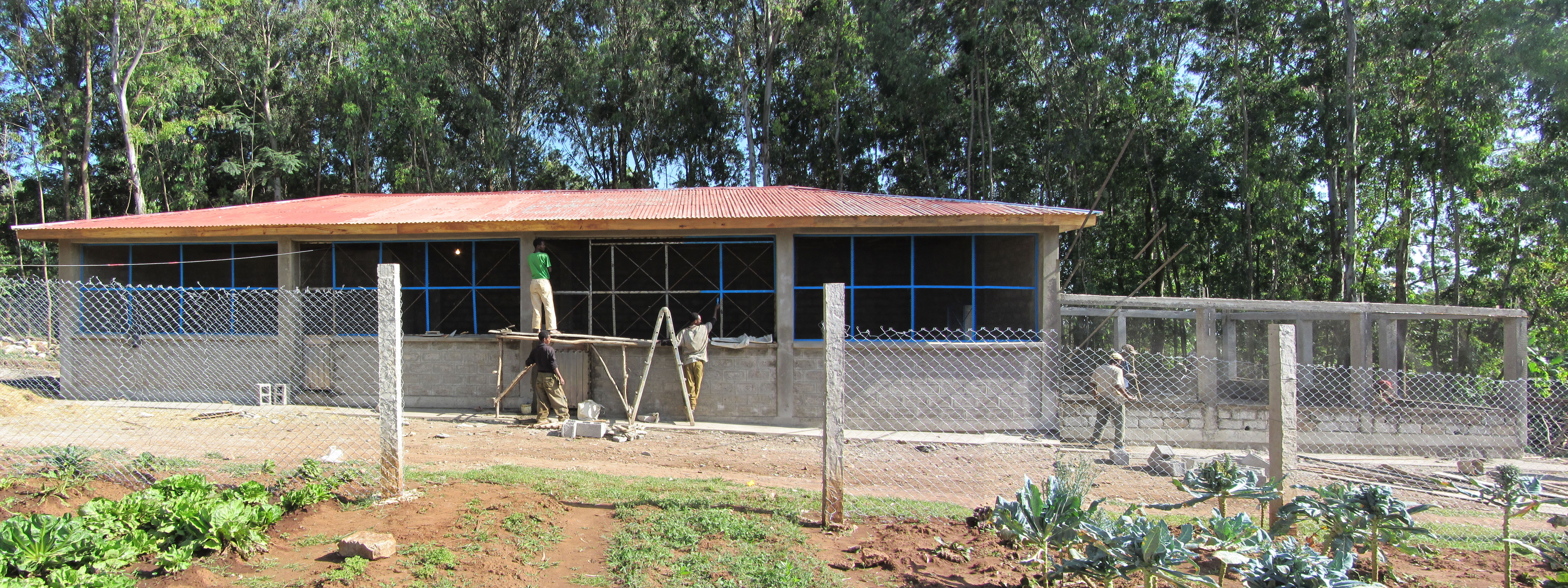 Crear sonrisas ong construccin de gallinero 2012 - Gallineros de obra ...